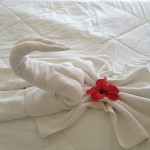 a picture of a towel folded like a swan with a red flower on top